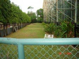 การจัดสวน ... สนามไดร์ฟกอล์ฟ