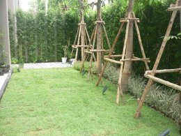 โครงการหมู่บ้าน Atria อารีย์-อินทามระ