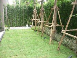 โครงการหมู่บ้าน Atria อารีย์ - อินทามระ