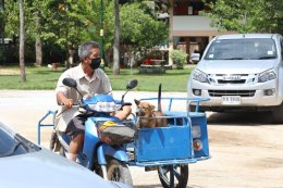 ลงพื้นที่เทศบาลตำบลท่าสาปเพื่อมอบ Face shield และลงพื้นที่ให้บริการฉีดวัคซีนโรคพิษสุนัขบ้า