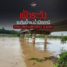 รายงานสถานการณ์ระดับน้ำในแม่น้ำปัตตานี