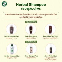 ผลิตภัณฑ์กลุ่มแชมพู Herbal Shampoo Jiva/Revita