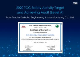 2020 TCC Safety Activity Target and Achieving audit (Level A)