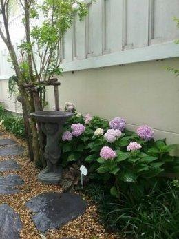 ดอกไม้ในสวนอังกฤษ