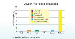 Krill oil สารสกัดจากกุ้งขนาดเล็กที่ให้ประโยชน์สุดมหัศจรรย์