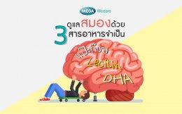 ดูแลสมอง ด้วยแปะก๊วย ดีเอชเอ และเลซิติน