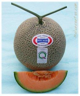 เมล็ด เพิร์ล เนื้อสีส้ม (20s)