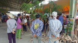อบรมให้ความรู้พี่น้องเกษตรกร และคณะเดินทางศึกษาดูงาน และรับเชิญเป็นวิทยากรให้ความรู้กับพี่น้องทำการเกษตร