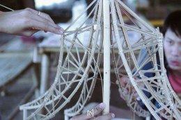 โมเดลที่ใช้ในการศึกษาโครงสร้างไผ่