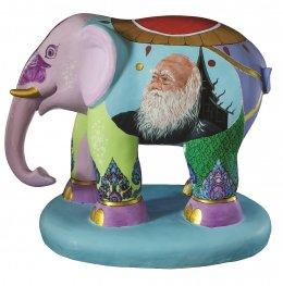 54. ช้างน้อยเจียงฮาย