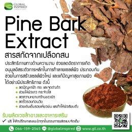 สารสกัด Pine Bark Extract