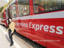 รถไฟชมวิวเบอร์นินา Berninal Express