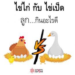 ไข่ไก่กับไข่เป็ดลูกกินอะไรดี