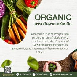 Organic Vs Natural แตกต่างกันอย่างไร?