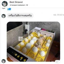 รีวิวตู้ฟักไข่
