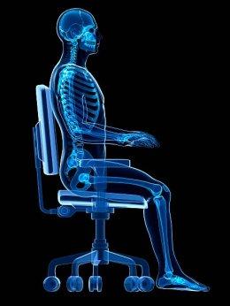 นั่งให้ถูกหลักสรีรศาสตร์ (Ergonomic)
