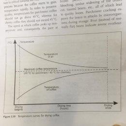LTLH ทางออกของกาแฟไทย (2)  Low Temp Drying เป็นการตากที่ถนอมคุณภาพเซลล์ให้อยู่ในจุดดีที่สุดได้