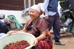 LTLH ทางออกของกาแฟไทย (12) : สิ่งที่ขอฝากไว้