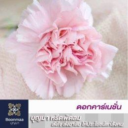 ความหมายของดอกไม้แต่ละชนิดที่ใช้ในงานศพ โดย บุญมา พวงหรีด