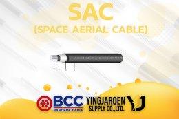 สาย SAC Bangkok Cable บางกอกเคเบิ้ล
