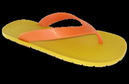 FLIPPER-พื้นเหลือง-สายสีส้ม