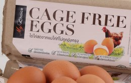 """""""เซ็นทรัล ฟู้ด รีเทล""""  ประกาศสนับสนุนหลักสวัสดิภาพสัตว์ ตั้งเป้าเพิ่มสัดส่วนจำหน่ายไข่ไก่เคจฟรี จากแม่ไก่ที่ไม่ถูกขังกรง (Cage-Free Eggs) เป็น 50 % ภายในปี  2568"""