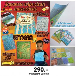 Japanese Wipe Clean Maze Cards