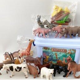 Amazing world animal in the box