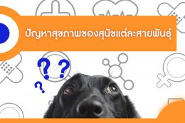 ปัญหาสุขภาพของสุนัขแต่ละสายพันธุ์