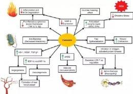 ภาวะแทรกซ้อนของโรคเบาหวาน ดูแลป้องกันและรักษาอย่างไร