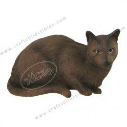 Supalak (Siamese Cat)