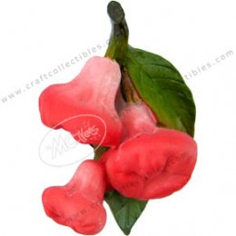 Rose Apple(bunch)