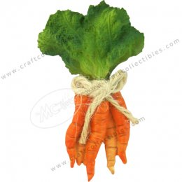 Carrot (bunch)