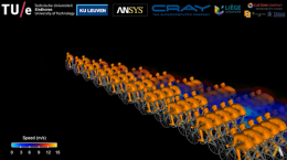CFD Simulation of a Peloton Reveals Complex Aerodynamics
