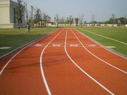 ระบบพื้นผิวสนามกีฬา