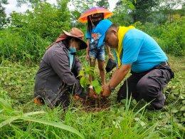 โครงการตำบลสิงห์ร่วมใจปลูกต้นไม้รักษาสิ่งแวดล้อม