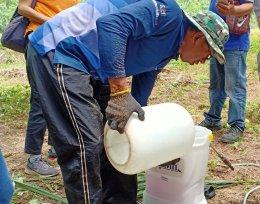 วช. ลงพื้นที่นำชีวภัณฑ์แบคทีเรียช่วยเกษตรกร ชาวสวนปาล์มกำจัดโรคโคนเน่าในต้นปาล์มน้ำมัน ที่จังหวัดสุราษฏร์ธานี