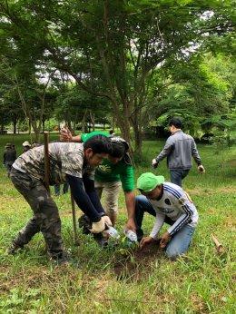 กิจกรรม CSR การทำโป่งเทียมและปลูกต้นไม้ ( 29/06/2562)