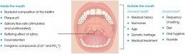 ความสำคัญของน้ำลายต่อสุขภาพในช่องปากและฟัน รวมไปถึงสภาวะของกลิ่นปากอันเนื่องมาจากความไม่สมดุลของเชื้อแบคทีเรียในช่องปาก ( Imbalance of Oral Microbiome )