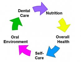 Dental Caries/ Tooth Decay Mechanisms and Oral Health in Balance....