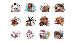 """Dog Leela"" Sticker Line"