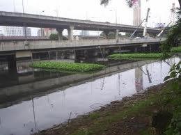 โครงการบำบัดน้ำเสียโดยใช้พืช บึงมักกะสัน กรุงเทพมหานคร