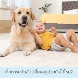 เด็กทารกอยู่ร่วมกับสัตว์เลี้ยงในบ้านได้หรือไม่?