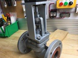Globe valve + air cylinder