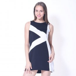 Panel Colourblock Dress