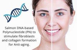 REJURAN HEALER เทคโนโลยี PN Polynucleotide ดูแลปัญหาหลุมสิว