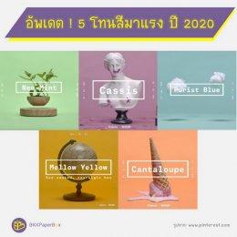 อัพเดต ! 5 โทนสีมาแรง ปี 2020