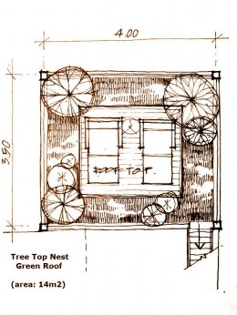 Tree Top Nest