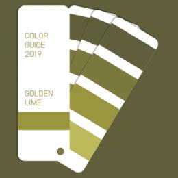 Color guide 2019