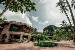 โรงแรมทรีเฮาส์ วิลล่า เกาะยาวน้อย พังงา (Tree House Villas)